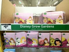 Reading List: Disney Princess Week